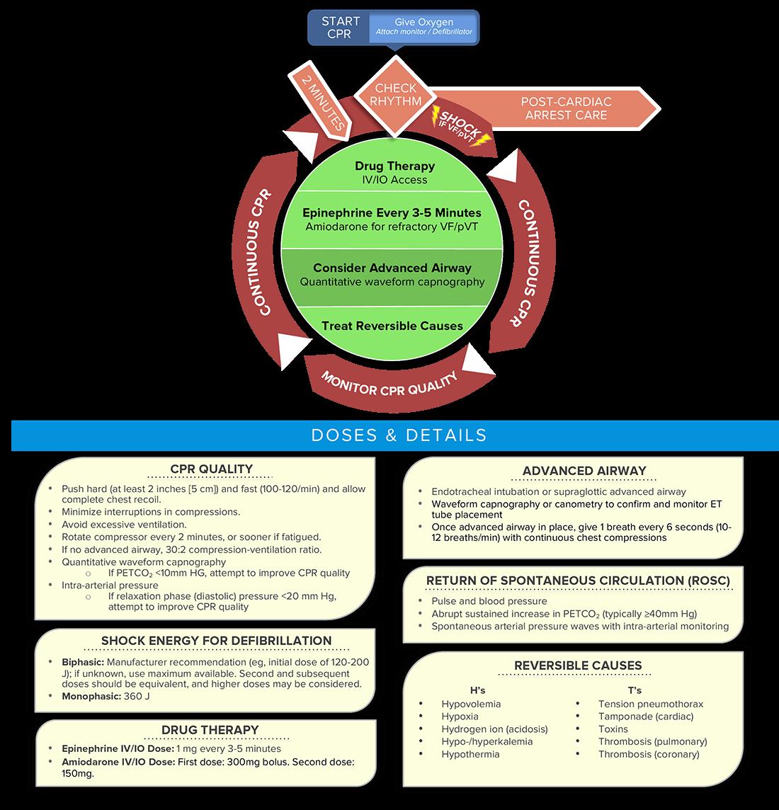 Promed certifications algorithms adult cardiac arrest circular cardiac arrest circular algorithm xflitez Image collections