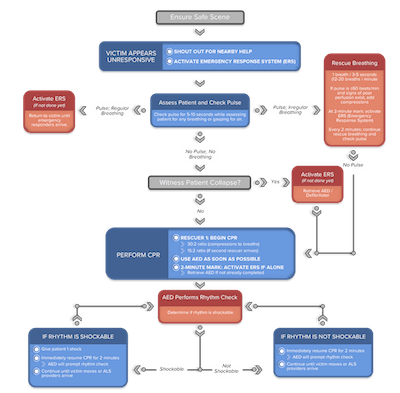 Pediatric BLS One Rescuer Algorithm